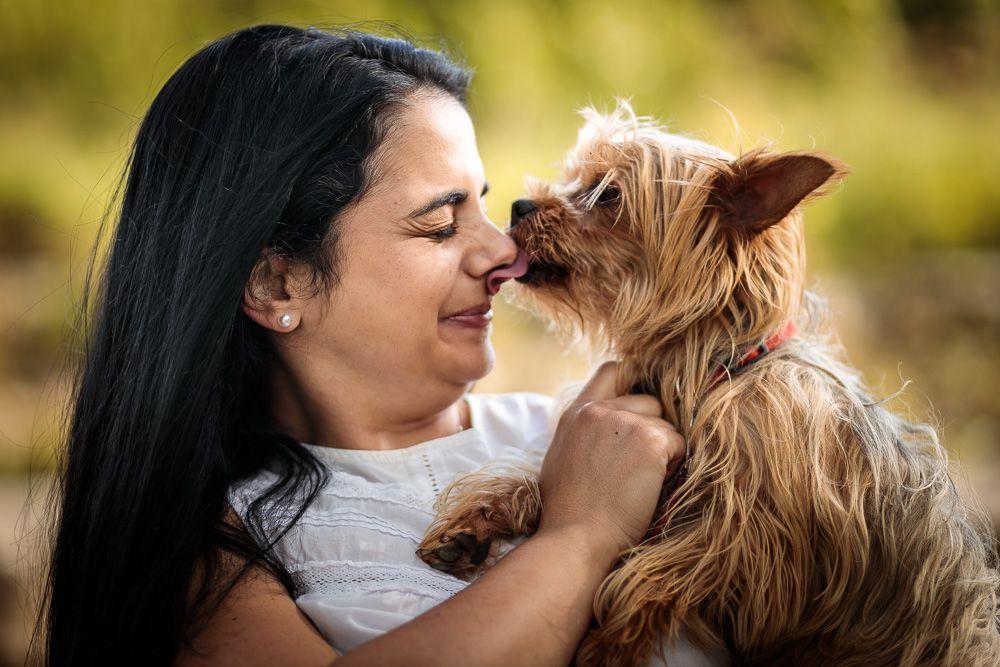 Sessão fotográfica com animal de estimação coimbra